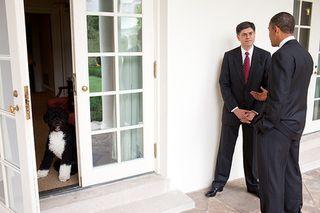 Obama's big dog