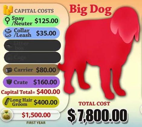Big dog cost