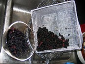Mulberry_washing_1